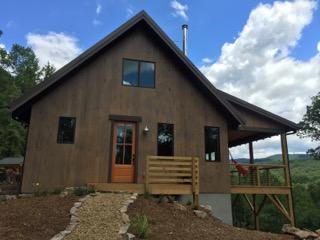 Buckner cabin1